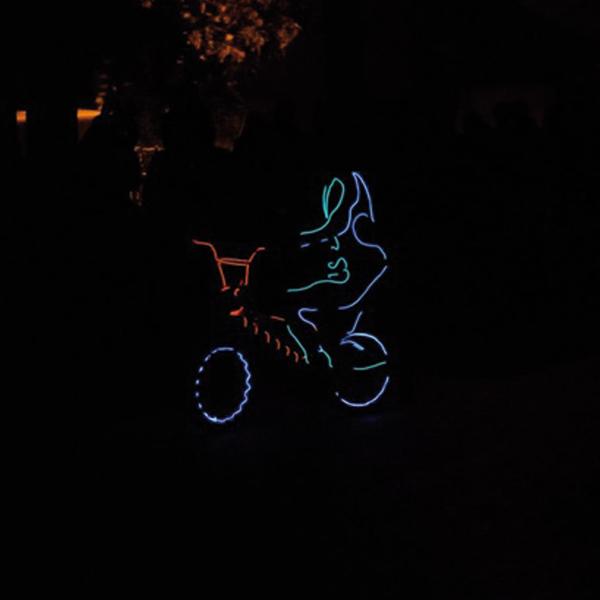 show lumineux séminaire