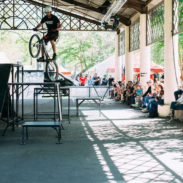 Show Trial Florian Bikeart